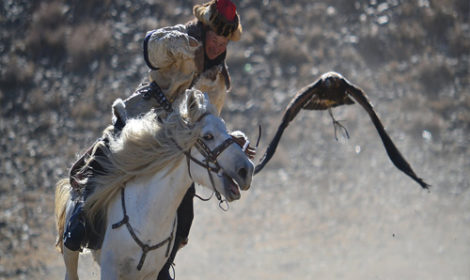 Eagle hunting Mongolia