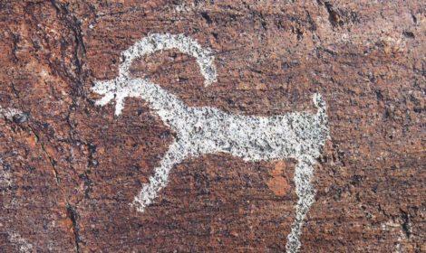 Petroglyphs in Mongolia