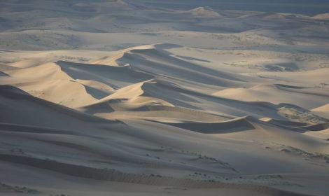 Gobi desert tour in Mongolia