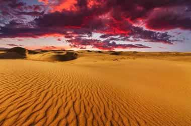 gobi desert tours