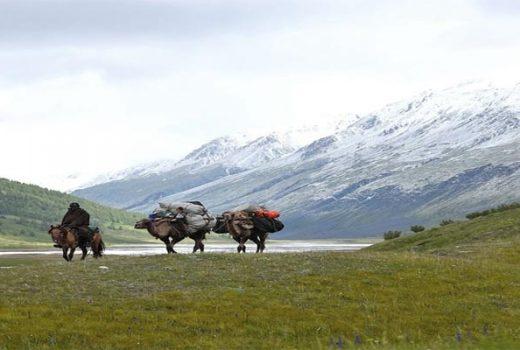 Trekking in Altai Tavan bogd