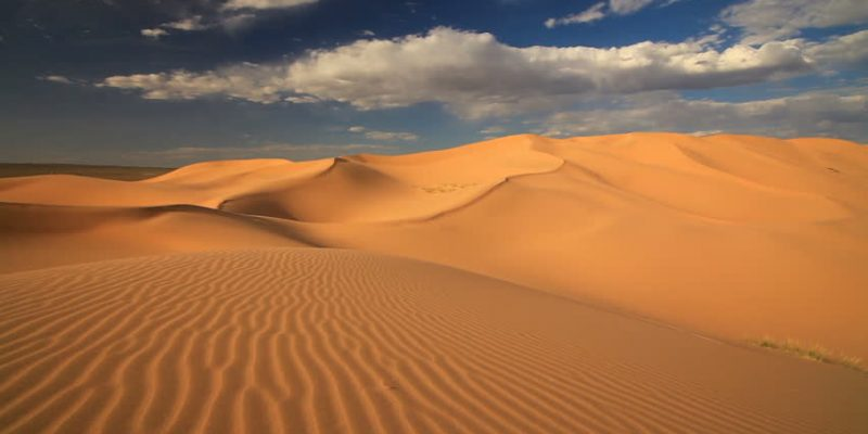 Khongoriin else - Khongor sand dune