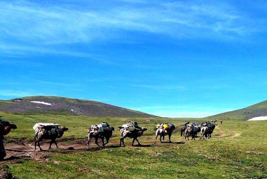 Trekking in Altai Tavan bogd national park