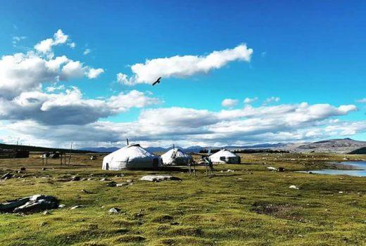 Tailor made tour to Mongolia
