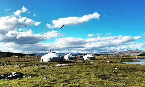 Tailor made tour to Mongolia