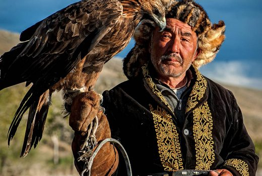 The eagle hunter is spoiling his eagle on his horse