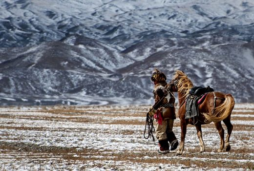 Horse training in Mongolia